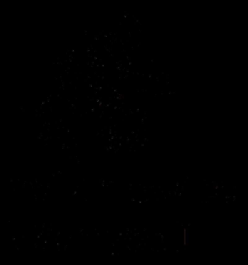 Wilamowice - logo